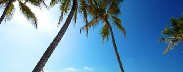 maldives weather